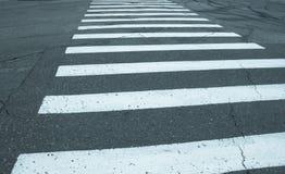 Скрещивание зебры Стоковые Изображения RF
