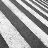 Скрещивание зебры Стоковое фото RF