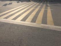 Скрещивание зебры Стоковые Фото