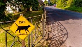 Скрещивание кота знака обеспечения безопасности на дорогах Стоковые Фото