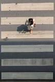 Скрещивание Crosswalk или зебры в городе Таиланде Бангкока стоковые изображения