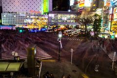 Скрещивание Shibuya на ноче Стоковое Фото