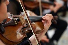 Скрипач женщин играя классическую скрипку Стоковая Фотография