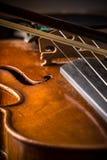 Скрипка в винтажном стиле стоковые изображения rf