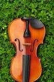 Скрипка в траве Стоковые Фотографии RF