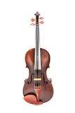 Скрипка или скрипка Стоковая Фотография