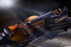 скрипка сбора винограда Стоковые Изображения RF