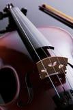 скрипка студии фото Стоковое Изображение