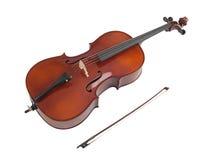 скрипка Стоковые Изображения RF