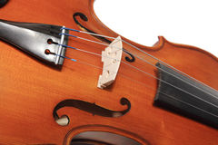 скрипки Стоковые Изображения RF