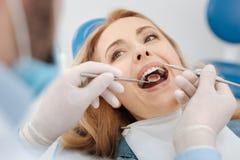 Скрупулезные сведущие зубы пациентов чистки дантиста Стоковое фото RF