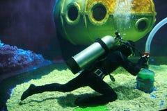 скуба водолаза Стоковое фото RF