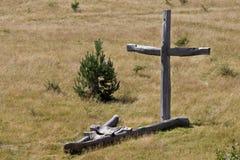 Скульптура в древесине Стоковые Фотографии RF