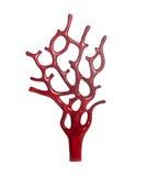 скульптура красного цвета коралла Стоковые Изображения RF