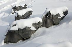 Скульптура лошади Стоковое фото RF