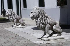 Скульптура льва в итальянском саде стоковые фотографии rf