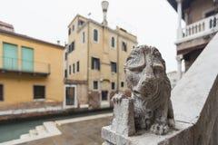 Скульптура льва на лестницах Стоковые Изображения