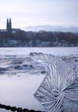 скульптура льда 01 Стоковое Изображение RF