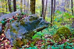 Скульптура медведя гранита в лесе стоковая фотография rf