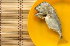 Скумбрия в оранжевом блюде на циновке Стоковое Изображение RF