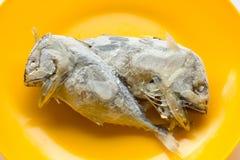Скумбрия в оранжевом блюде Стоковые Изображения RF