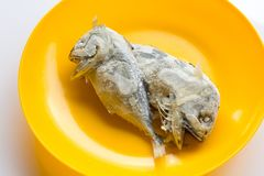 Скумбрия, который 2 замерли в оранжевом блюде Стоковое Изображение RF