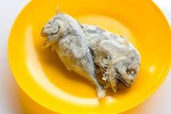 Скумбрия, который 2 замерли в оранжевом блюде Стоковая Фотография RF