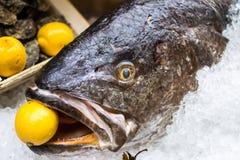 Скудные рыбы с лимоном в рте Стоковая Фотография RF