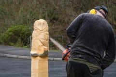 Скульптор цепной пилы на работе Стоковое Изображение
