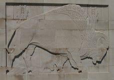 Скульптура барельеф буйвола Стоковое Фото