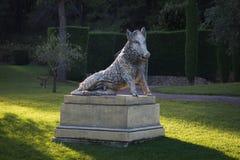 Скульптура дикого кабана в заходе солнца Стоковое фото RF