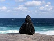 Скульптура морем в Bondi Стоковое Изображение