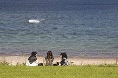 Скульптура морем Стоковая Фотография RF
