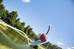 Скульптура ложки вишни Миннеаполиса стоковое изображение rf