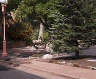 Скульптура лошадей в Санта-Фе город капитолия Неш-Мексико стоковое фото