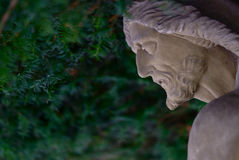 Скульптура с darkgreen предпосылкой Стоковая Фотография