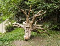 скульптура Стоковое Изображение RF