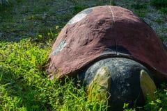 Скульптура Ladybug Стоковое Изображение RF