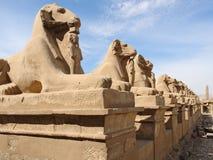 Скульптуры на пределе Amun-Re в Египте Стоковое Изображение