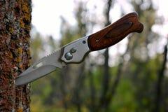 Складывая нож вставляя из дерева в лесе стоковое фото rf