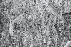 Склеенные деревянные shavings Стоковое фото RF