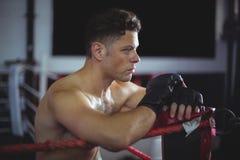 Склонность боксера на боксерском ринге Стоковые Изображения RF