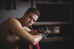 Склонность боксера на боксерском ринге Стоковое Изображение