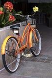 Склонность велосипеда колеса апельсина 2 на стене Стоковые Изображения