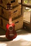Склонность гитары гавайской гитары Стоковые Фото