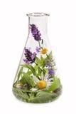 Склянка с целебными травами стоковые изображения rf