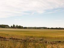 Славная земля травы поля фермы вне дня ` s лета Стоковое Фото