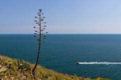 Славная красивая деталь океана от Косты Brava в Испании Стоковое фото RF