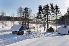 славная северная зима взгляда Стоковые Изображения