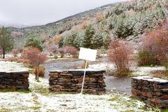 Славная снежная пуща сосенки с белым плакатом Стоковая Фотография RF